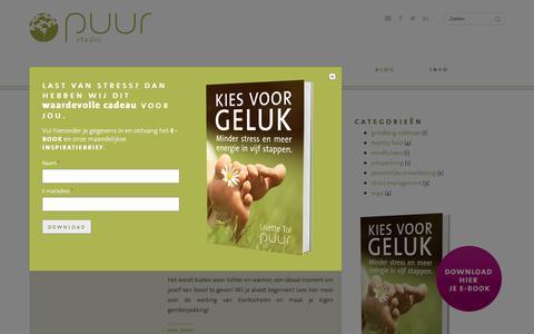 Screenshot of Blog puur-studio.nl - Puur Studio inspiratie blog | Puur Studio - captured Dec. 14, 2015