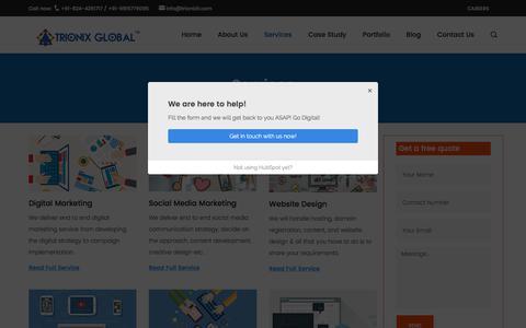 Screenshot of Services Page trionixglobal.com - Social media marketing company bangalore - captured June 29, 2017