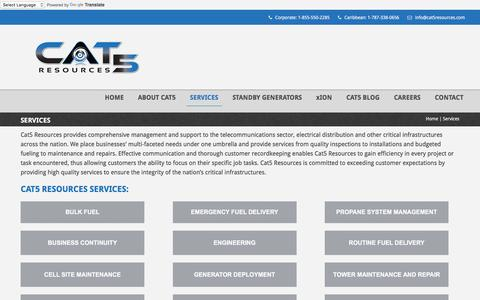 Screenshot of Services Page cat5resources.com - Services | Cat5 Resources - captured July 11, 2016