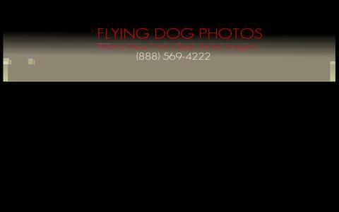 Screenshot of Home Page flyingdogphotos.com - Flying Dog Photos.com Long Islands BEST Aerial Photography - captured Feb. 6, 2015