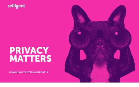 Screenshot of Landing Page selligent.com - Privacy Matters - captured April 20, 2017