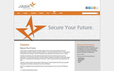 Screenshot of Jobs Page triplecanopy.com - Triple Canopy   Secure Success - captured Oct. 8, 2014