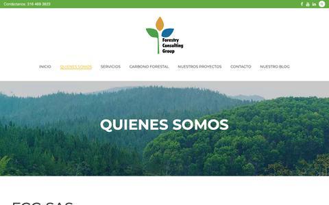 Screenshot of About Page fcgsas.com - Quienes somos - captured Oct. 10, 2018