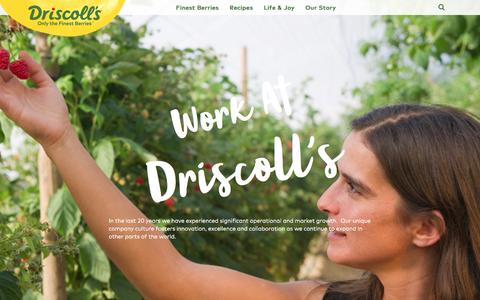 Screenshot of Jobs Page driscolls.com - Careers - captured June 5, 2017