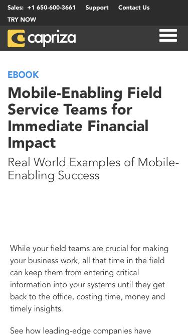 eBook: Mobile-Enabling Field Service Teams for Immediate Financial Impact | Capriza