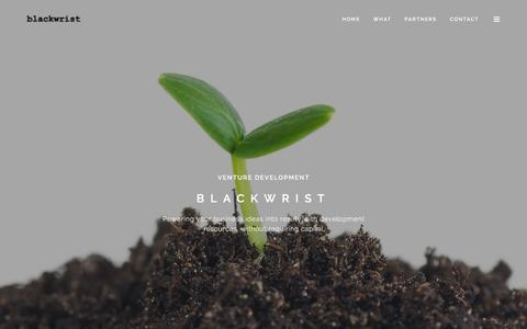 Screenshot of Home Page blackwrist.com - Blackwrist - captured Feb. 7, 2016
