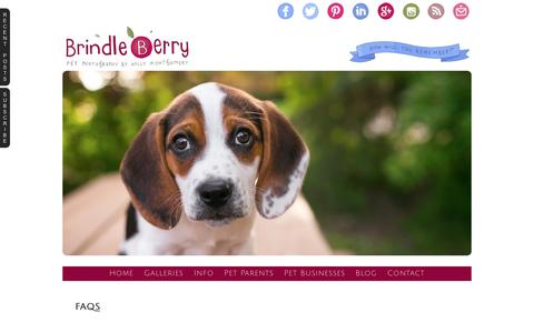 Screenshot of FAQ Page brindleberrypetphoto.com - FAQs » BrindleBerry Pet Photography - captured Feb. 8, 2016