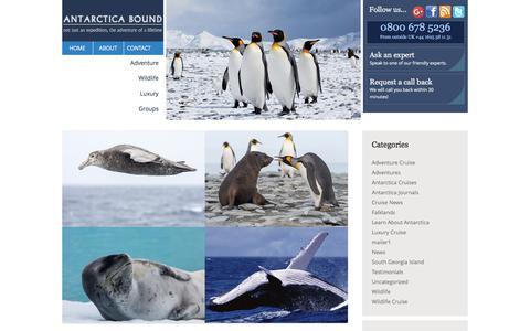Screenshot of Blog antarcticabound.com - Antarctica Bound Blog - captured Nov. 24, 2015
